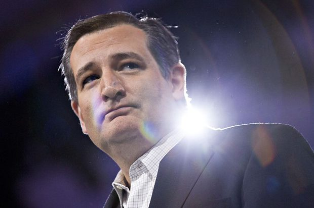 Sen. Ted Cruz. (Andrew Harrer/Bloomberg via Getty Images)