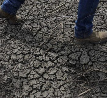 California Drought's Impact on Health to be Revealed