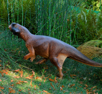 An artist's illustration of Psittacosaurus, a little dinosaur with a parrot-like beak and bristles on its tail that roamed thick forests in China about 120 million years ago is shown in this image released on September 15, 2016. Courtesy Jakob Vinther/University of Bristol and Bob Nicholls/Handout via REUTERS