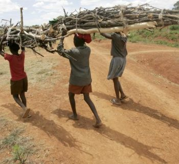 Children carry firewood on their heads near a slum in Hatcliffe, Harare December 9, 2008. Up to 60,000 people in Zimbabwe could be infected with cholera in the worst case if the epidemic spirals further out of control, the World Health Organisation (WHO) said on Tuesday. The known number people with cholera in Zimbabwe stands at 13,960 with 589 deaths, although the true extent of the outbreak which began in August is unclear, according to the U.N. agency. REUTERS/Philimon Bulawayo (ZIMBABWE) - RTR22F17